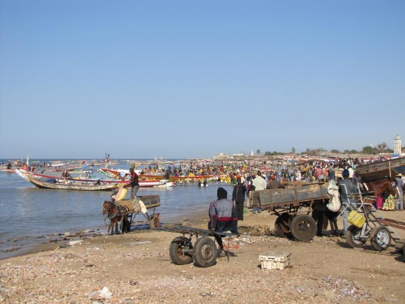 voyage au Sénégal  Img_3013