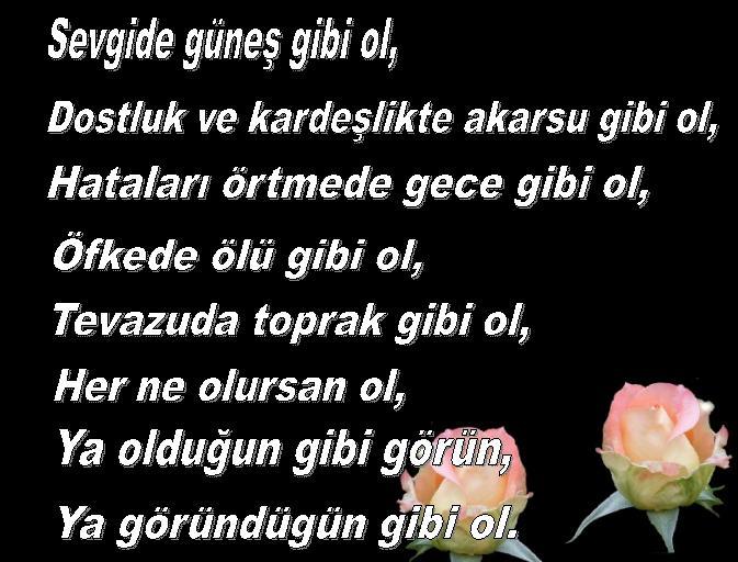 citations/poemes...(en turc ou en francais) 54qz110