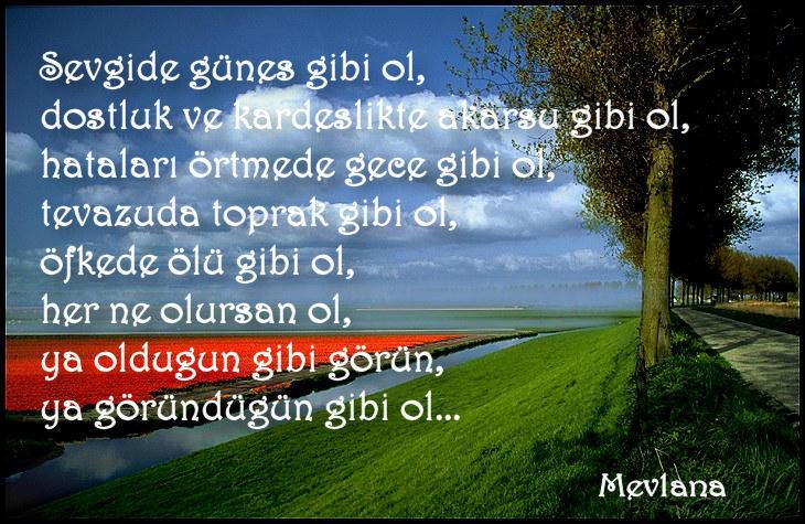 citations/poemes...(en turc ou en francais) Cennet10