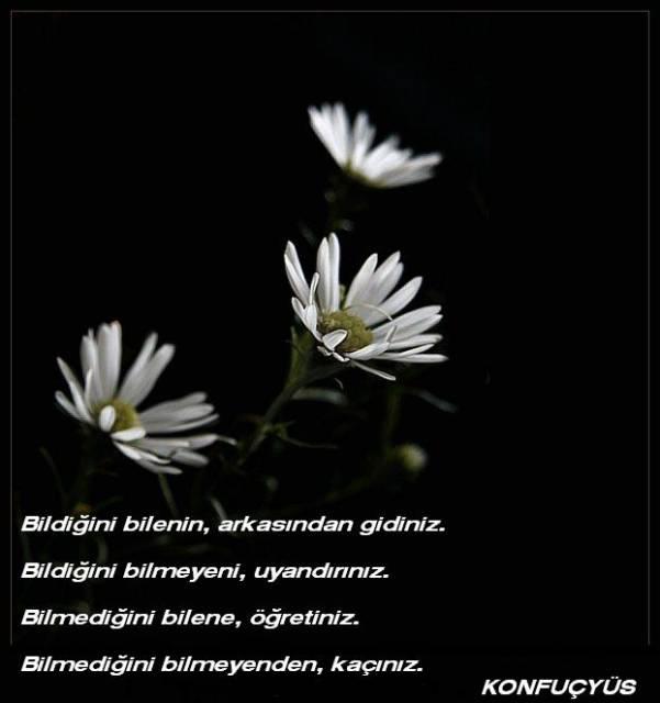 citations/poemes...(en turc ou en francais) Konfuc10