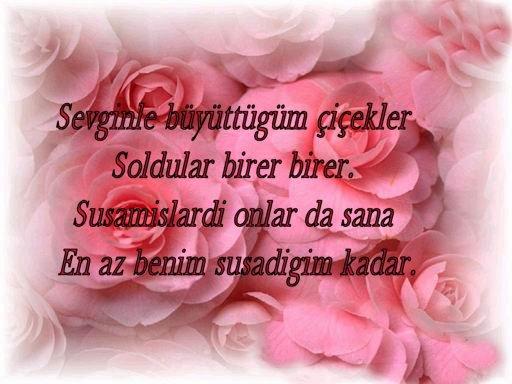 citations/poemes...(en turc ou en francais) Soldun10