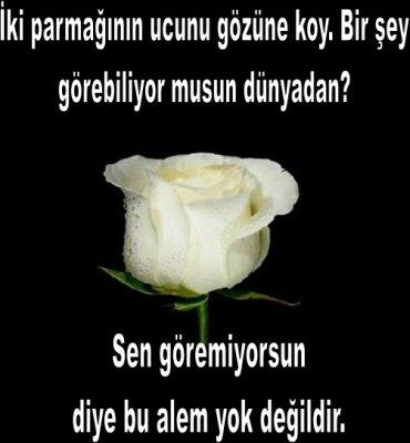 citations/poemes...(en turc ou en francais) Y1ptoa10