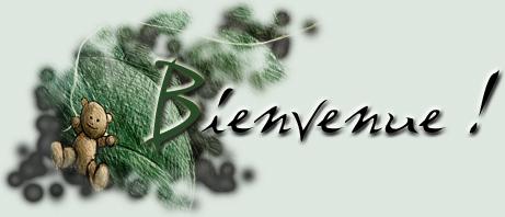 Design du forum Bienve11