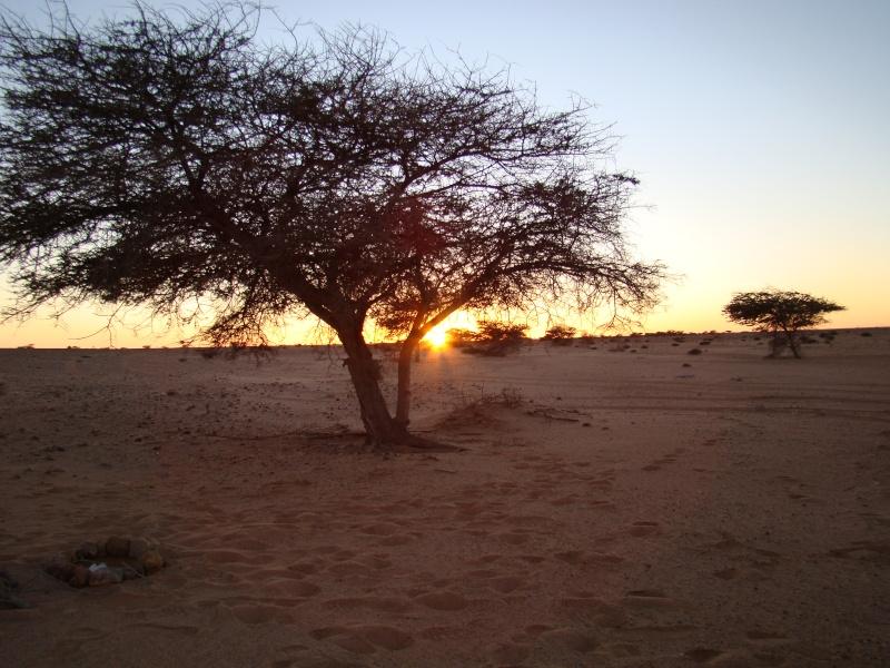 celles que j'adore Maroc_33