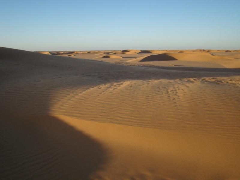 celles que j'adore Maroc_34