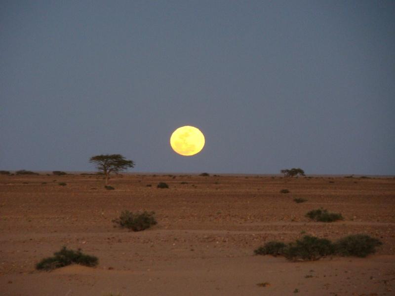 des questions qui attendent des réponses Maroc_41