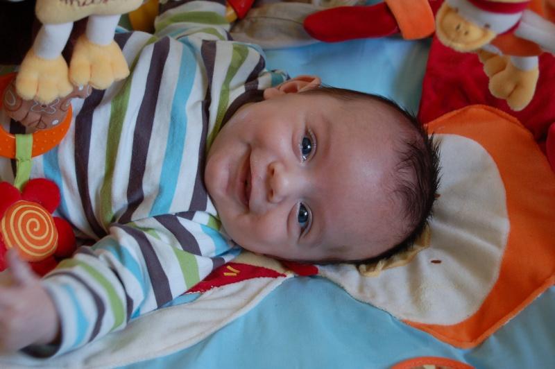 photos de ma petite limace devenue petit canaillou Dsc_0011
