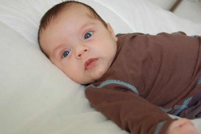 photos de ma petite limace devenue petit canaillou Dsc_0310