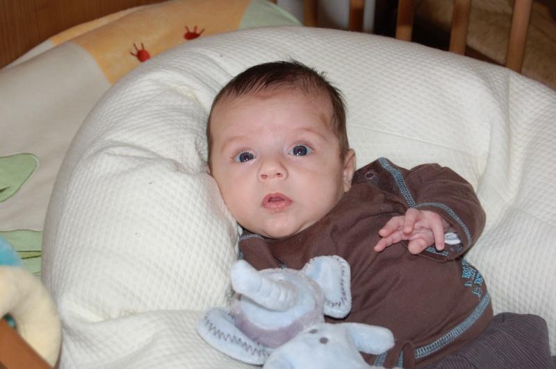 photos de ma petite limace devenue petit canaillou Dsc_0311