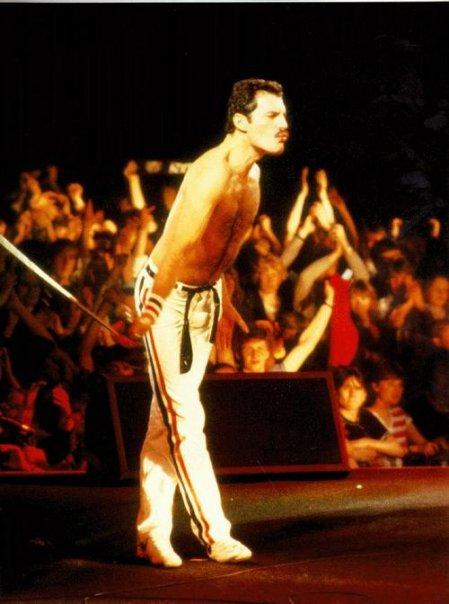 Quelques photos de Freddie 21060_10