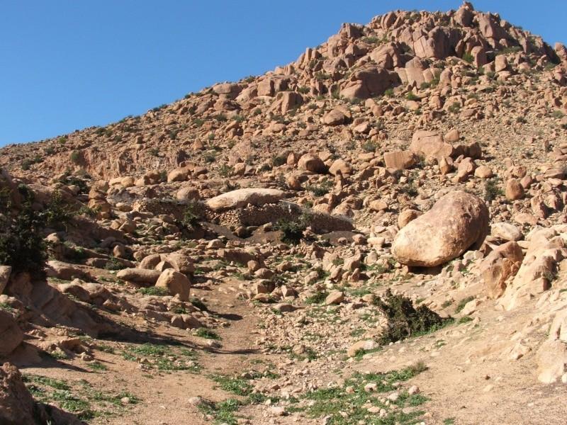 Mes premiers 3 mois au Maroc 00610