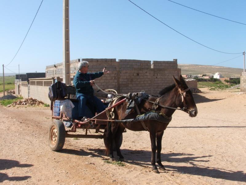 Mes premiers 3 mois au Maroc 19810