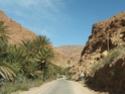 Mes premiers 3 mois au Maroc - Page 2 02110