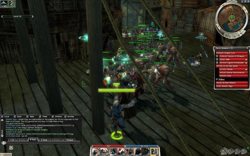 Guild Wars more shettt Gw07110