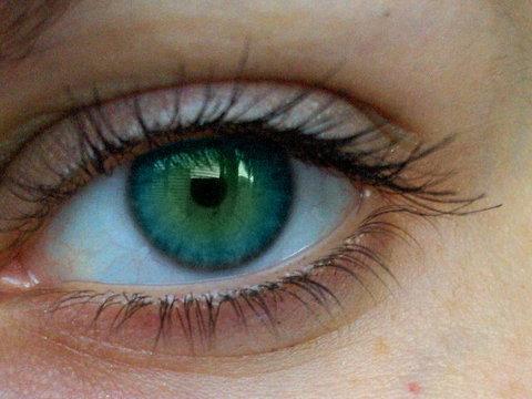 Dear My eye! 21775111