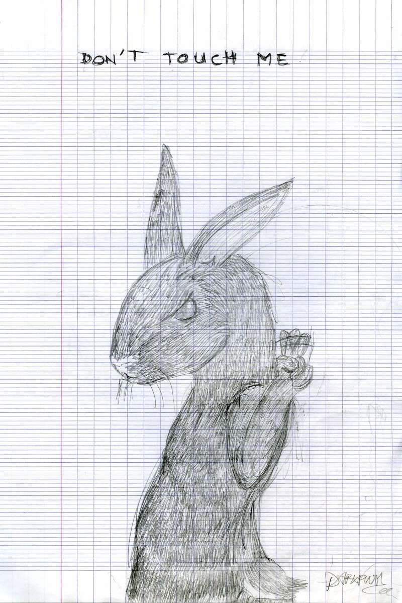 Darkpush vous présente son G-art-g Lapin_10