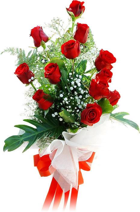 هنيئا سي عبد الواحد Roses10