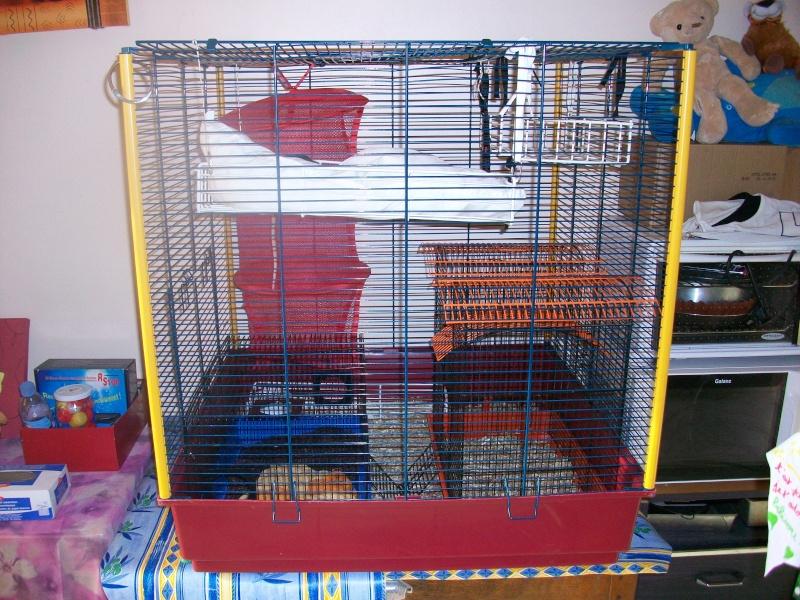 [21] Vends Cage Furet XL 100_1010