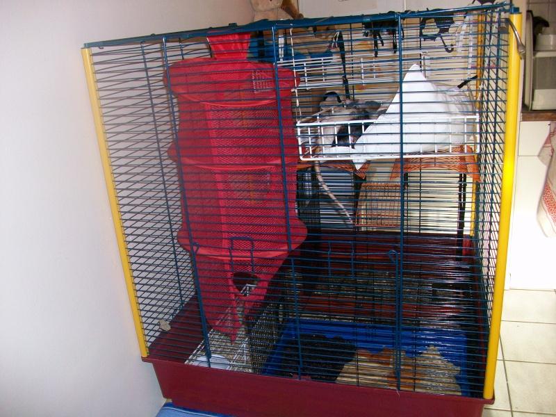 [21] Vends Cage Furet XL 100_1011