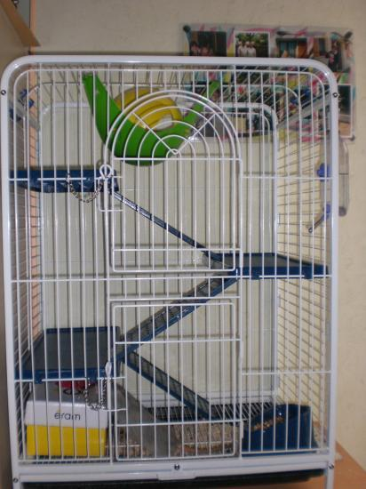 VENDS CAGE TOWER L Cimg0123