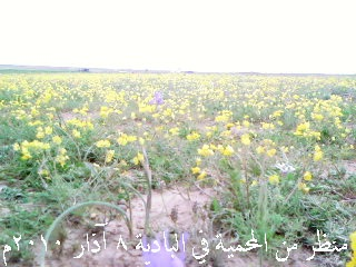 رحلة ثانوية بلدة محكان إلى بادية الشام 0_610