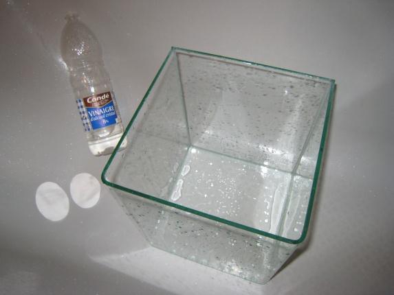 Photos de mon Nano cube 20 litres Photos10