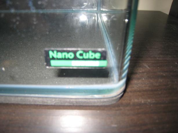 Photos de mon Nano cube 20 litres Photos16