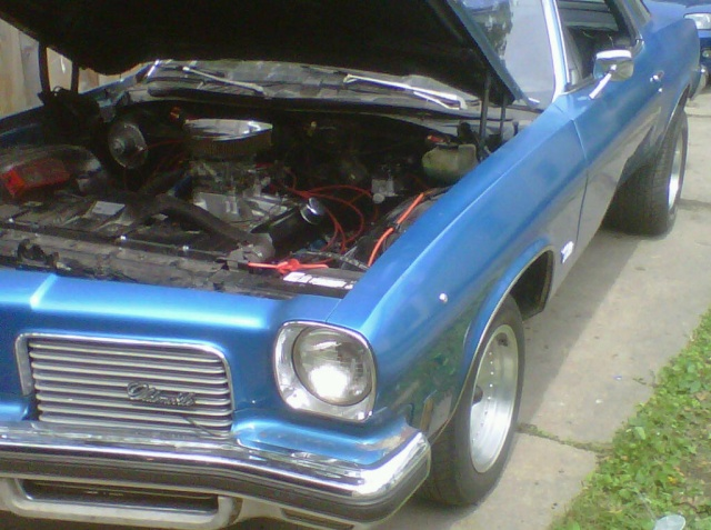 just for you 1973 454 monte Img00127
