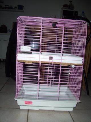 vend  cages news édité p.1 Lund_010