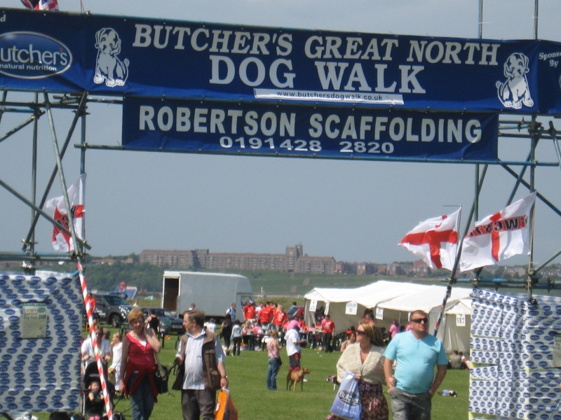 Butchers Great North Dog Walk 2011 - 12th June - In Aid Of RAFA Butche12