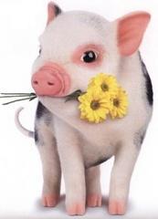 Le cochon qui sommeille Pig10