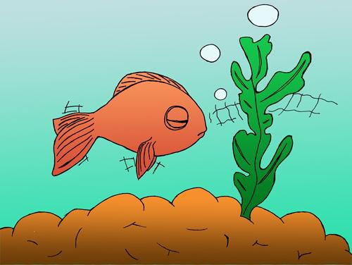 pas à pas poisson rouge / poisson clown (drawny) Poisso13