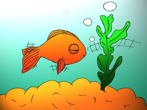 pas à pas poisson rouge / poisson clown (drawny) Poisso14