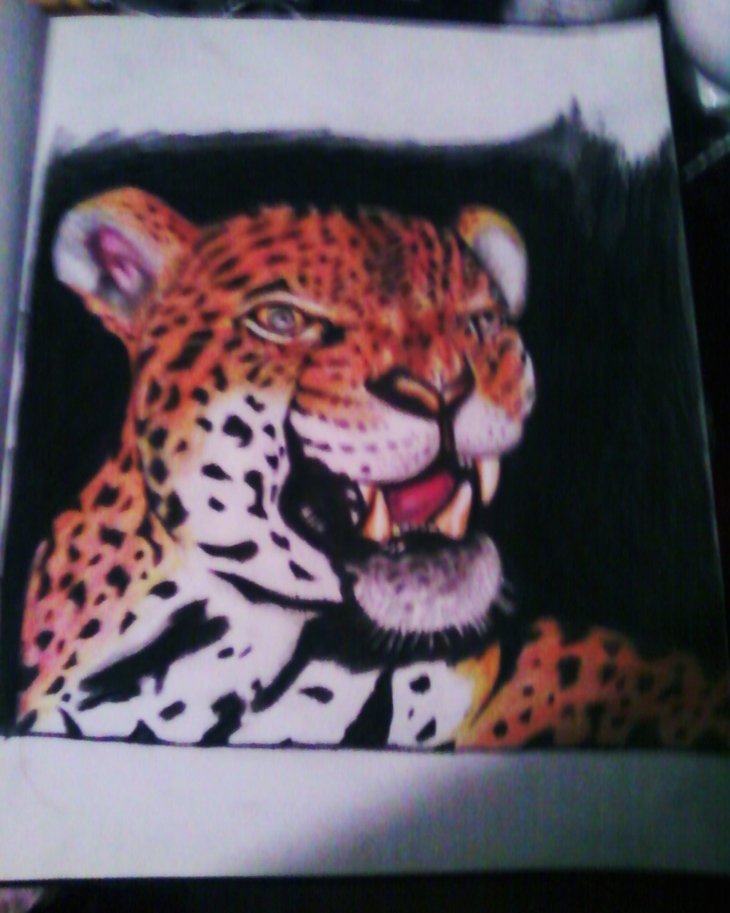 My frist  Baby  leopard Drawing  2011 Tiger_11