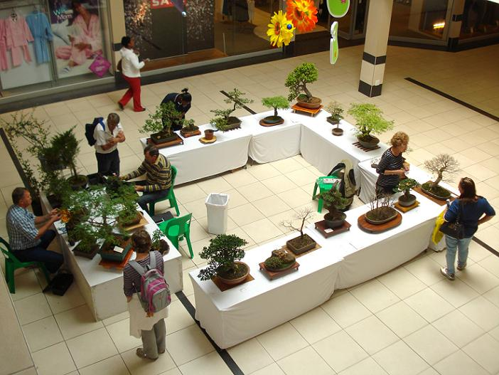Mini exhibition at shopping mall. Dsc05010