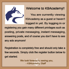 new to K9 Academy. Question about dog food. K9acad10