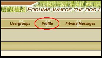 Tutorial: Where are the new posts/threads? Profil10