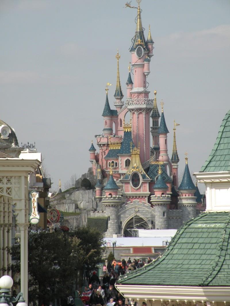 Remplacement des arbres à Disneyland Paris - Page 3 00611
