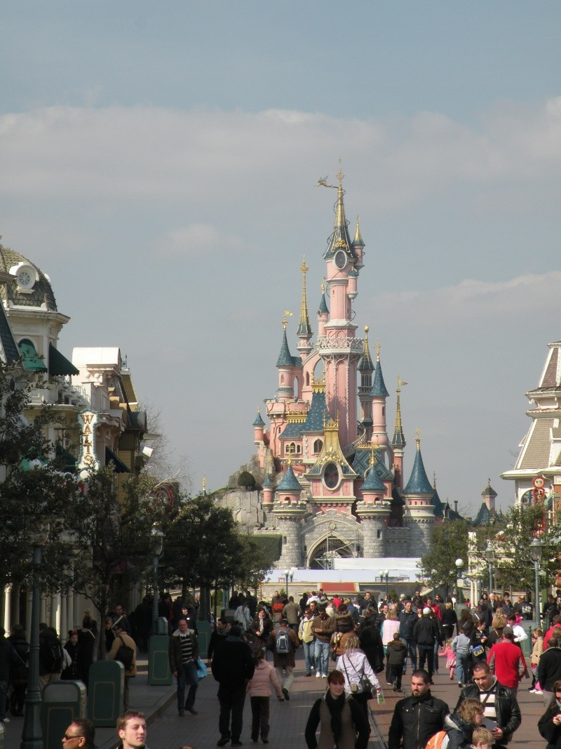 Remplacement des arbres à Disneyland Paris - Page 3 00911