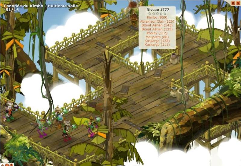 Canopé de la Kimbo (22.12.2010) Groupe21