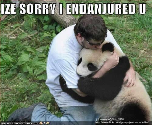 Panda plaza Funny-10