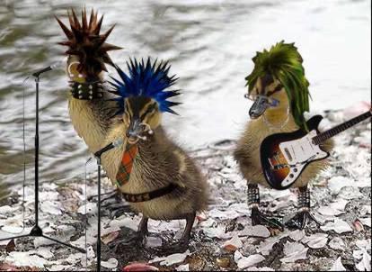 Duck- Duck- Goose! Oddani10