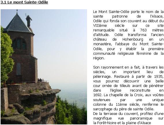 Le vignoble de Colmar et autoroute Allemande 21 et 22 août 2010 - Page 2 Mont_s10