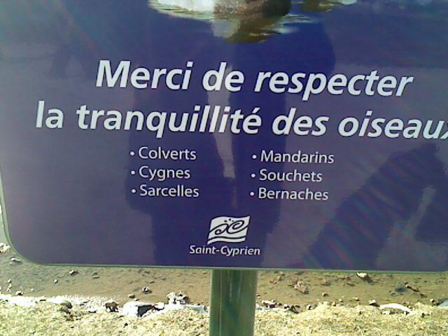 """Le courage et la mort d'un.... """"Héros de cygne noir"""". Le_05_11"""