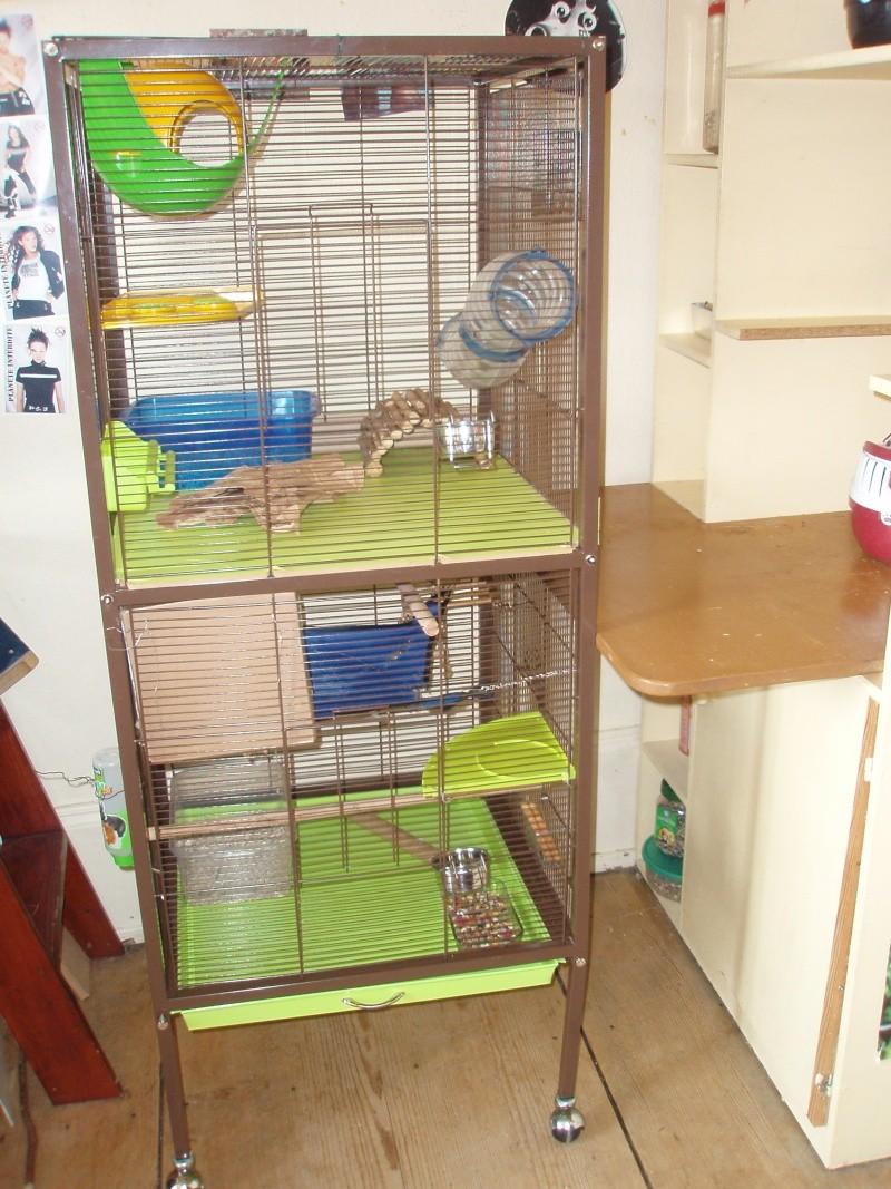 vends différentes cages (68) P4270014