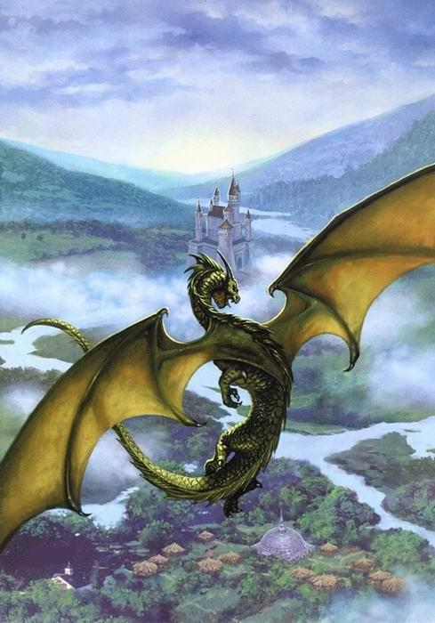 Le lien du dragon G351ra10
