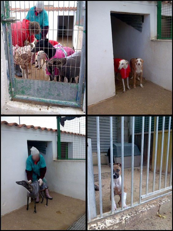 Les refuges d'Espagne Arca_d11