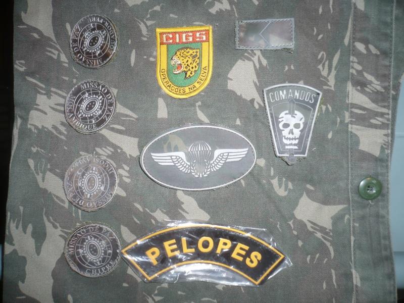 Brazilian Military Insignia P1150410