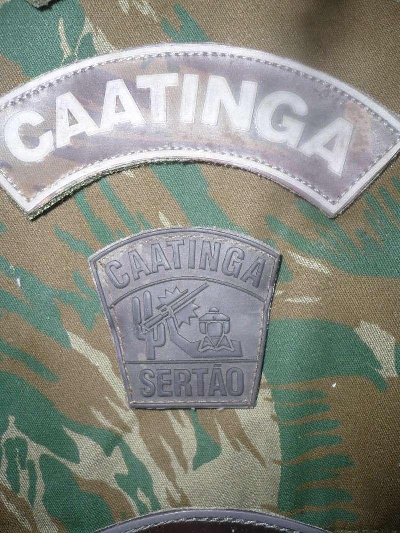 Brazilian Military Insignia P1180010