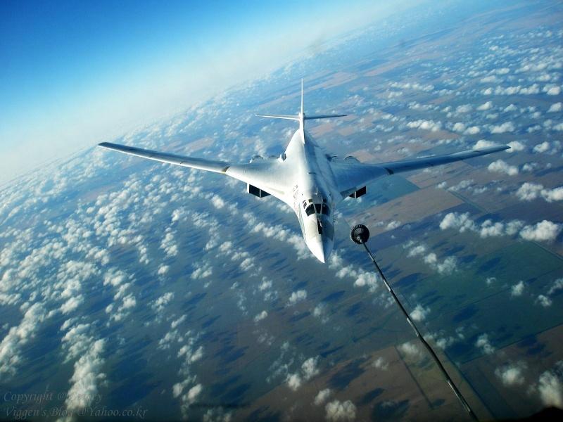 Tu-160 Blackjack 46540110